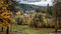 Fall Colors Roseburg Oregon